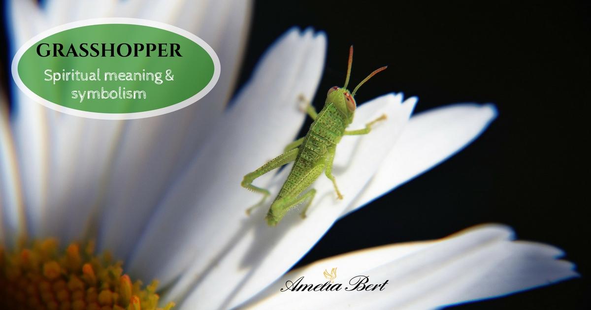 Grasshopper spiritual Meaning