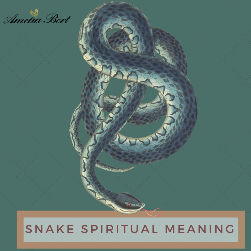 Spiritual meaning of a snake