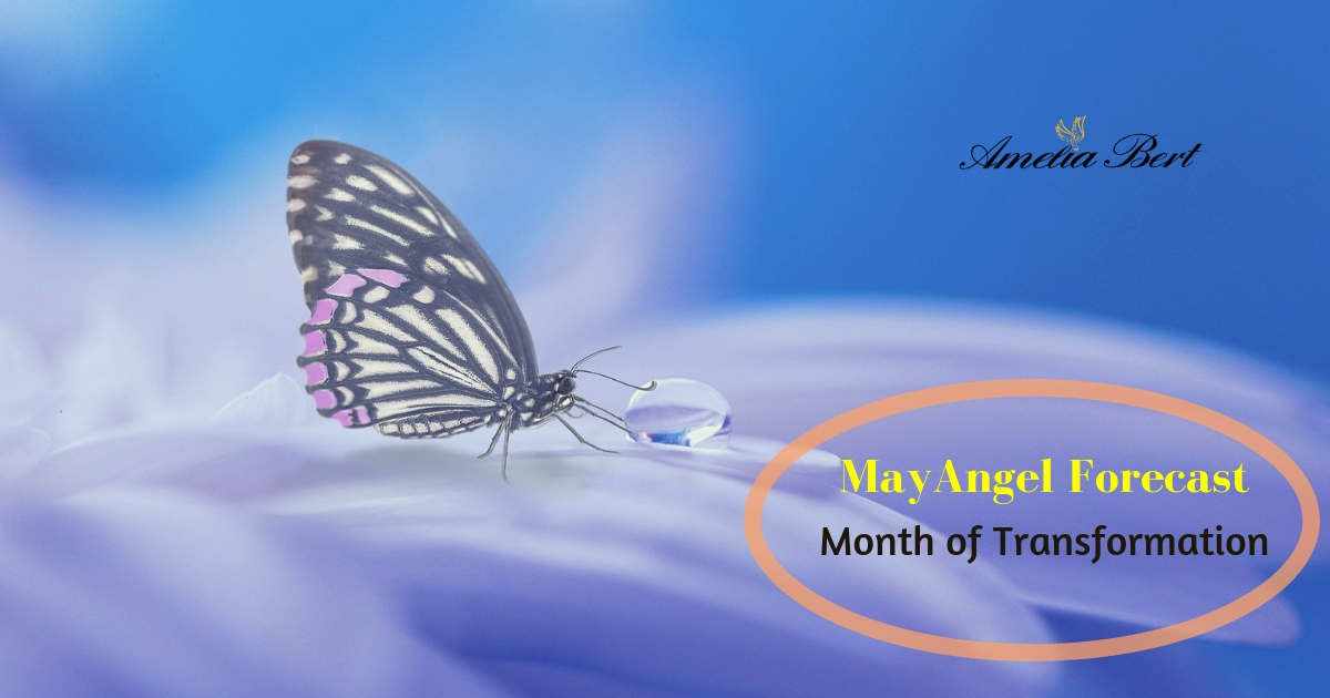 Your transformation is here and now – MAY ANGEL FORECAST