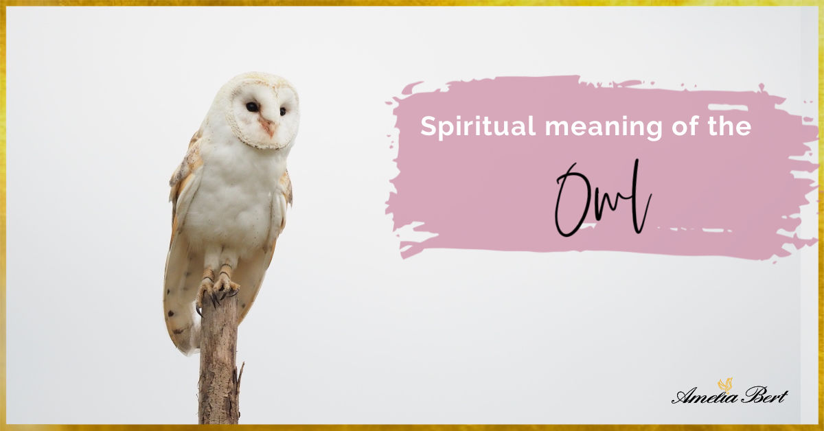 Spiritual meaning of the owl