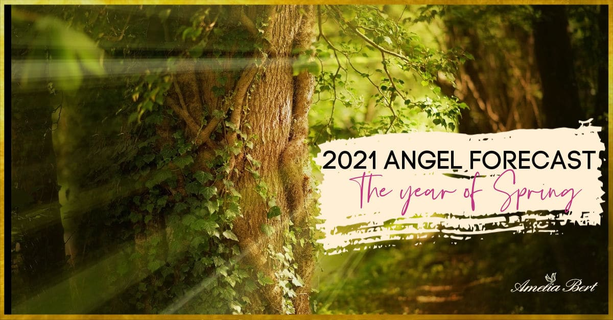The new year of spring – 2021 angel forecast